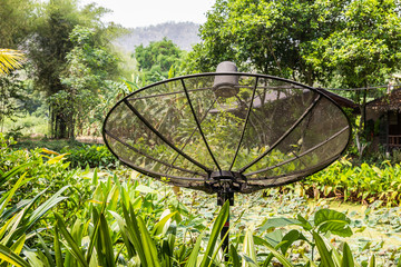 Sattelite dish among plant and tree near lotus pond,Thailand