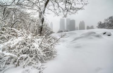 winter storm Central Park, New York City
