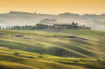 Beautiful green field and the Tuscany landscape
