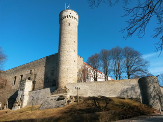 Pikk Hermann towerof the Toompea hill in Tallinn