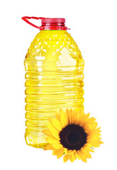 bottle oil plastic big and sunflower on white background
