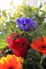 Blumen mit Platz für Text