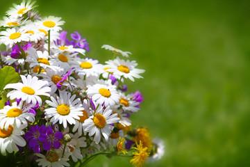 Colorful flowers  bouquet .