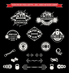 Vector Gym and Fitness Logo, Labels, Badges and Design Elements