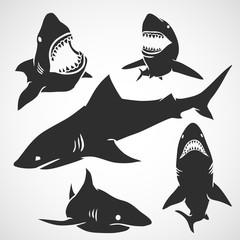 Set of Sharks