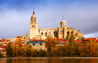 Salamanca Cathedral from  River
