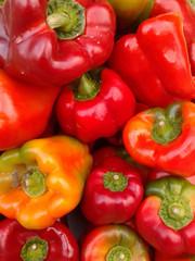 Pimientos  de asar verdes - rojos