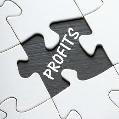 Profits  revealed beneath a missing jigsaw puzzle piece