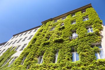 begrüntes Haus in Deutschland