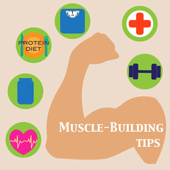 muscle-building set