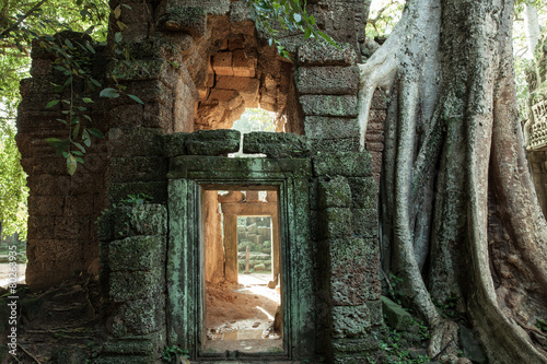 The ruins of Ta Prom Temple, Angkor Historical Park, Cambodia. - 80263935