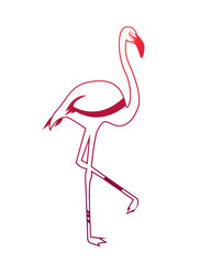 Logo pink flamingo. Abstract silhouette of the bird