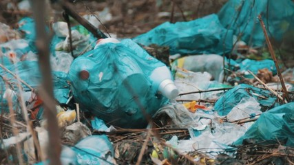 Trash on the dump