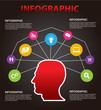 infographics vector brain