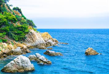 The rocky coastline. Rock in the sea