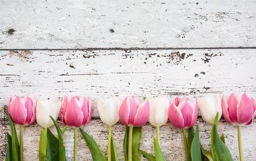 Foto op Canvas Tulp Blumen