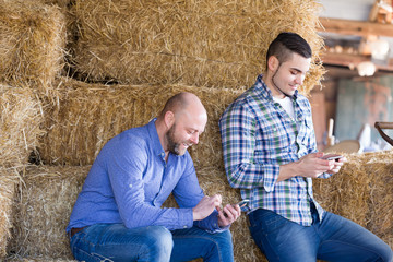 Two farmers with phones at hayloft