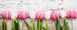 Blumen - 80272928