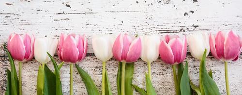 Foto op Aluminium Tulp Blumen