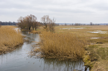 Early spring landscape with small river Merla in Ukraine