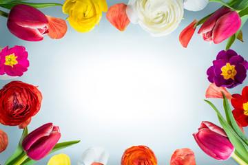 Rahmen aus Frühlingsblühern