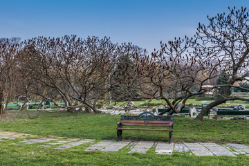 Park landscape in the spring time in Bucharest
