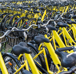 Texture of yellow bikes parked near rental station in a park