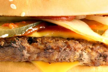 macro fragment burger