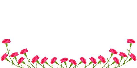 カーネーション 母の日 花