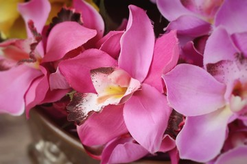 Artificial orchid flowers at beauty