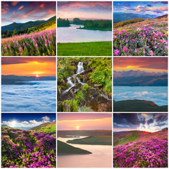Collage with 9 square summer landscapes.