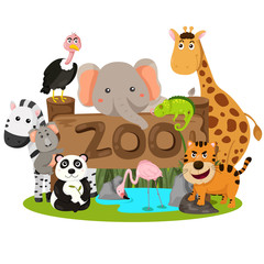 Illustrator of zoo animals