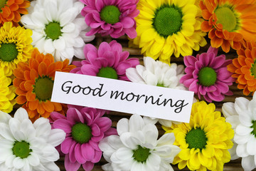 Good morning card with colorful Santini flowers