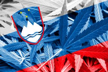 Slovenia Flag on cannabis background. Drug policy.