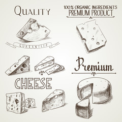 Hand drawn doodle sketch cheese with different premium quality
