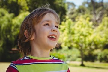 Cute little boy in the park