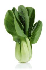 Pak Choi, Chinese cabbage