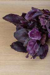 Violet basil