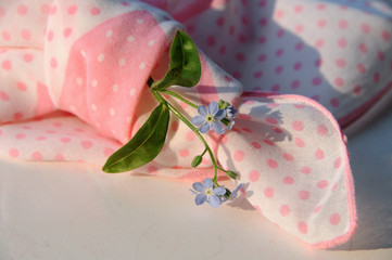 Forget-me-not in a knotted handkerchief