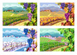 Vineyard and grapes bunches. Four seasons. - 80307392