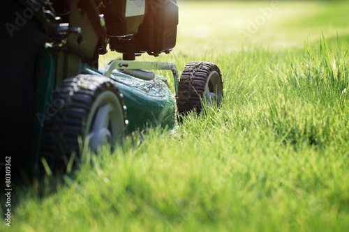 Foto op Canvas Tuin Mowing the grass