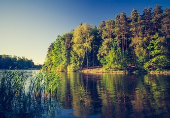 Vintage photo of lake landscape with forest.
