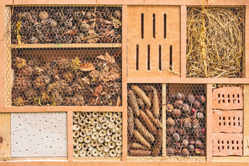 Insect shelter with constructions for different insects