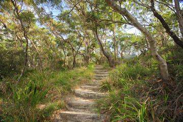 Bushwalking in Jervis Bay National Park