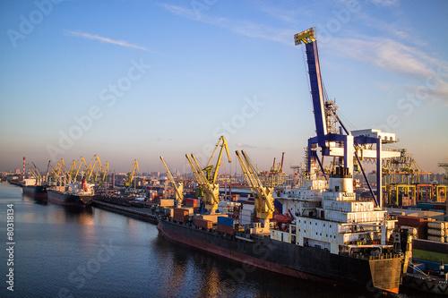 Marine port Container Terminal - 80318134