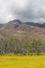 Molokai Clouds Over Mountain