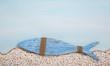 Leinwanddruck Bild - Blauer Deko Fisch als christliches Symbol zur Taufe