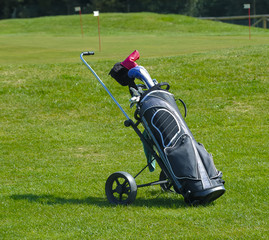 Golf bag in a golf course with a green background