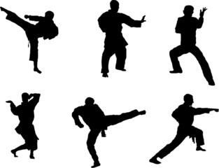 Martial art silhouette