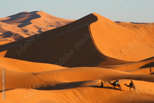 Foto op Canvas Zandwoestijn balade en dromadaire dans le désert de Merzouga